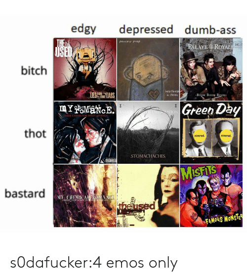 Ass, Bitch, and Dumb: edgy depressed dumb-ass  pencey Prep  PALAYE ROYAL  bitch  1  UES heLIARS  heartbreak  n stereo  BoOM B0OM RoOM  Green Dby  TION  THREE CHEERS FOR SWEET RIVENGE  thot  nimrod.  nimrod  STOMACHACHES.  ADVISORY  bastard  theu  FAMOUS MONSTE s0dafucker:4 emos only