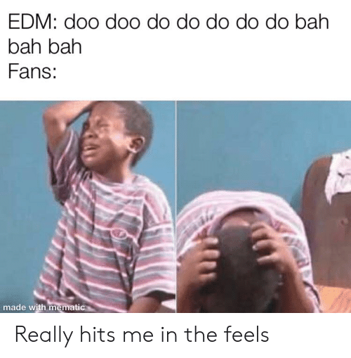 Edm, Made, and Feels: EDM: doo doo do do do do do bah  bah bah  Fans:  made with mematic Really hits me in the feels