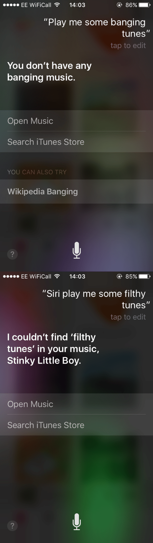 "Music, Siri, and Wikipedia: EE WiFiCall14:03  86%  ""Play me some banging  tunes  tap to edit  You don't have any  banging music.  Open Music  Search iTunes Store  YOU CAN ALSO TRY  Wikipedia Banging   EE WiFiCall14:03  ④ 85%  ""Siri play me some filthy  tunes  tap to edit  l couldn't find 'filthy  tunes' in your music,  Stinky Little Boy.  Open Music  Search iTunes Store"