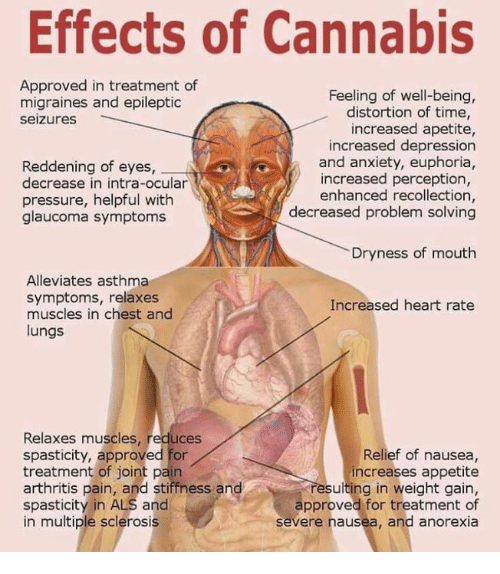 Effects Of Cannabis Approved In Treatment Of Feeling Of Well Being