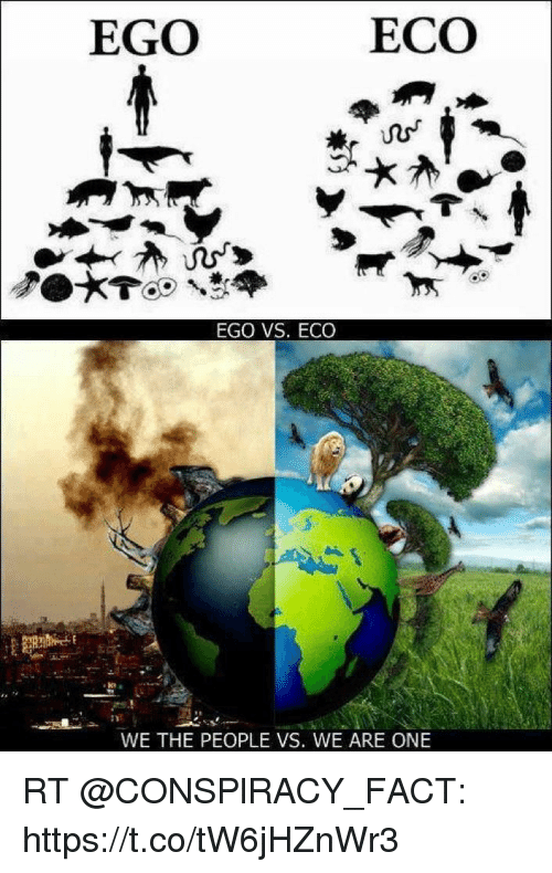 What Does Rt Mean >> EGO ECO EGO VS ECO WE THE PEOPLE VS WE ARE ONE RT httpstcotW6jHZnWr3 | Meme on ME.ME
