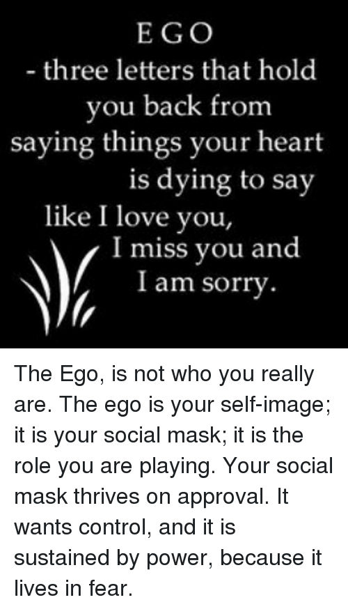 Image result for ego mask