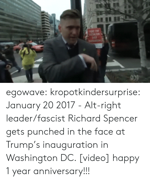 Tumblr, Twitter, and Blog: egowave:  kropotkindersurprise:  January 20 2017 - Alt-right leader/fascist Richard Spencer gets punched in the face at Trump's inauguration in Washington DC. [video]  happy 1 year anniversary!!!