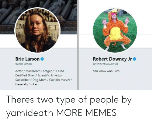 Dank, Memes, and Robert Downey Jr.: EI  Brie Larson  Robert Downey Jre  @RobertDowneyJr  You know who I am  @brielarson  Actor / Mushroom Forager SCUBA  Certified Diver Scientific American  Subscriber / Dog Mom / Captain Marvel /  Generally Stoked Theres two type of people by yamideath MORE MEMES