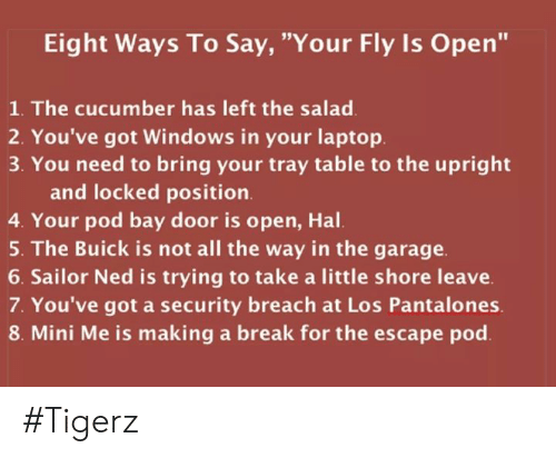 """Memes, Mini-Me, and Windows: Eight Ways To Say, """"Your Fly Is Open""""  1. The cucumber has left the salad  2. You've got Windows in your laptop  3. You need to bring your tray table to the upright  and locked position.  4. Your pod bay door is open, Hal  5. The Buick is not all the way in the garage.  6. Sailor Ned is trying to take a little shore leave.  7. You've got a security breach at Los Pantalones.  8. Mini Me is making a break for the escape pod #Tigerz"""