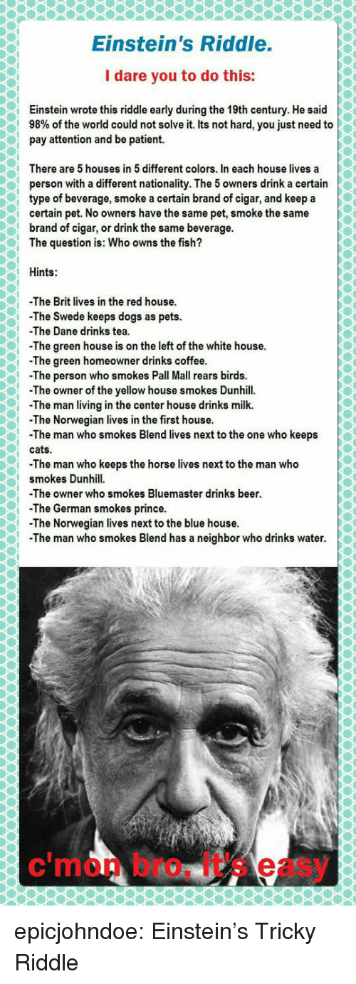 Beer, Cats, and Dogs: Einstein's Riddle.  I dare you to do this:  Einstein wrote this riddle early during the 19th century. He said  98% of the world could not solve it. Its not hard, you just need to  pay attention and be patient.  There are 5 houses in 5 different colors. In each house lives a  person with a different nationality. The 5 owners drink a certain  type of beverage, smoke a certain brand of cigar, and keep a  certain pet. No owners have the same pet, smoke the same  brand of cigar, or drink the same beverage.  The question is: Who owns the fish?  Hints:  -The Brit lives in the red house  The Swede keeps dogs as pets.  -The Dane drinks tea  The green house is on the left of the white house.  -The green homeowner drinks coffee  -Th  e person who smokes Pall Mall rears birds.  The owner of the yellow house smokes Dunhill.  The man living in the center house drinks milk.  The Norwegian lives in the first house.  -The man who smokes Blend lives next to the one who keeps  cats.  -The man who keeps the horse lives next to the man who  smokes Dunhill  The owner who smokes Bluemaster drinks beer  -The German smokes prince.  -The Norwegian lives next to the blue house  The man who smokes Blend has a neighbor who drinks water.  c'mon bro, it's easy epicjohndoe:  Einstein's Tricky Riddle