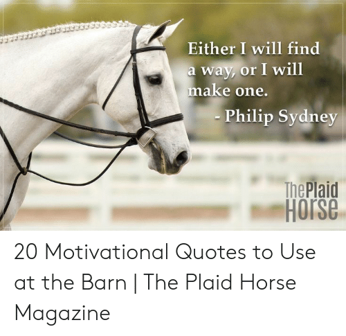 Horse, Quotes, and Sydney: Either I will find  a way, or I will  make one.  Philip Sydney  The Plaid  Horse 20 Motivational Quotes to Use at the Barn | The Plaid Horse Magazine