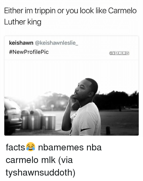 Basketball, Facts, and Nba: Either im trippin or you look like Carmelo  Luther king  keishawn @keishawnleslie  #NewProfilePic  @NBAMEMES facts😂 nbamemes nba carmelo mlk (via ‪tyshawnsuddoth‬)