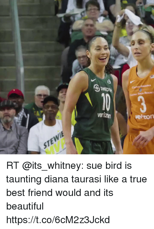 Beautiful, Best Friend, and Memes: eizon  STEWI RT @its_whitney: sue bird is taunting diana taurasi like a true best friend would and its beautiful https://t.co/6cM2z3Jckd