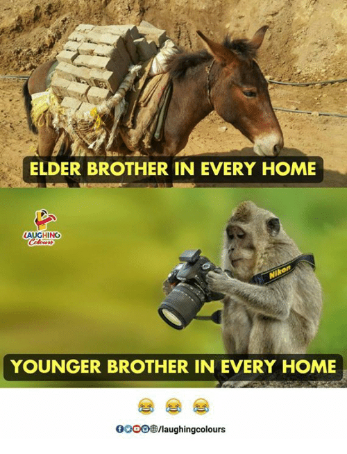 Home, Indianpeoplefacebook, and Brother: ELDER BROTHER IN EVERY HOME  AUGHING  YOUNGER BROTHER IN EVERY HOME  OOOO/laughingcolours