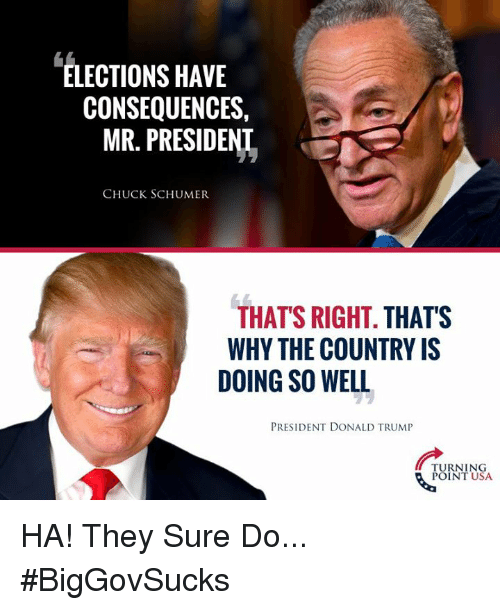 Memes, 🤖, and Usa: ELECTIONS HAVE  CONSEQUENCES,  MR. PRESIDENL  CHUCK SCHUMER  THAT'S RIGHT. THATS  WHY THE COUNTRY IS  DOING SO WELL  PRESIDENT DONALD TRUMIP  TURNING  POINT USA HA! They Sure Do... #BigGovSucks