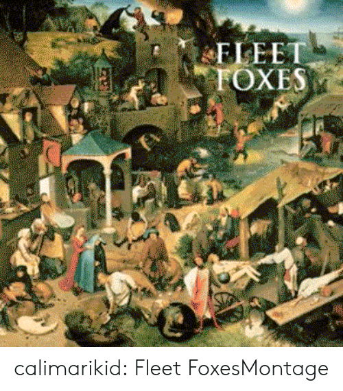 Tumblr, Blog, and Http: ELEET  FOXES calimarikid:  Fleet FoxesMontage