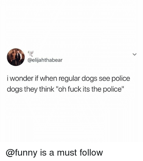 "Dogs, Funny, and Memes: @elijahthabear  i wonder if when regular dogs see police  dogs they think ""oh fuck its the police"" @funny is a must follow"