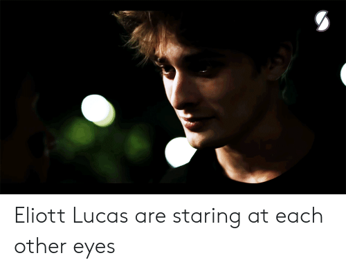 Lucas, Amp, and Eyes: Eliott  Lucas are staring at each other eyes