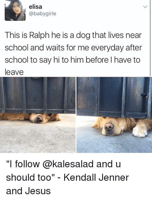 """Jesus, Kendall Jenner, and Memes: elisa  @babygirle  This is Ralph he is a dog that lives near  school and waits for me everyday after  school to say hi to him before l have to  leave """"I follow @kalesalad and u should too"""" - Kendall Jenner and Jesus"""
