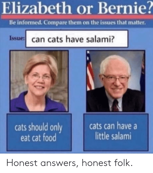 Cats, Food, and Bernie: Elizabeth or Bernie?  Be informed. Compare them on the issues that matter.  Issue can cats have salami?  cats can have  little salami  cats should only  eat cat food Honest answers, honest folk.