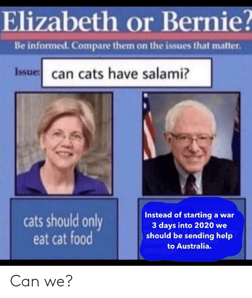 Cats, Food, and Australia: Elizabeth or Bernie?  Be informed. Compare them on the issues that matter.  Issue: can cats have salami?  Instead of starting a war  3 days into 2020 we  should be sending help  cats should only  eat cat food  deserv  to Australia.  attention Can we?