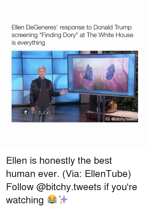 "Donald Trump, Ellen DeGeneres, and Finding Dory: Ellen DeGeneres' response to Donald Trump  screening ""Finding Dory"" at The White House  is everything  tube  IG: @bitchy tweets Ellen is honestly the best human ever. (Via: EllenTube) Follow @bitchy.tweets if you're watching 😂✨"