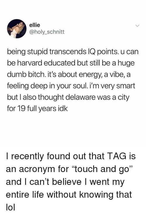 """Bitch, Dumb, and Energy: ellie  @holy_schnitt  being stupid transcends IQ points. u can  be harvard educated but still be a huge  dumb bitch. it's about energy, a vibe, a  feeling deep in your soul. i'm very smart  but I also thought delaware was a city  for 19 full years idk I recently found out that TAG is an acronym for """"touch and go"""" and I can't believe I went my entire life without knowing that lol"""
