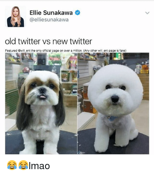 Fake, Memes, and Twitter: Ellie Sunakawa  @elliesunakawan  old twitter vs new twitter  Featured @will ent the only official page on over a milion. (Any other will ent page is fake) 😂😂lmao