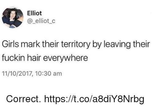 Funny, Girls, and Hair: Elliot  @_elliot_c  Girls mark their territory by leaving their  fuckin hair everywhere  11/10/2017, 10:30 am Correct. https://t.co/a8diY8Nrbg