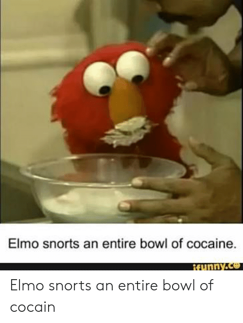 Elmo Snorts An Entire Bowl Of Cocaine Funnyce Elmo Snorts An Entire