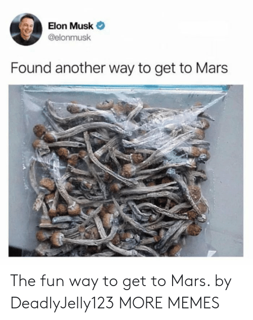 Dank, Memes, and Target: Elon Musk Ф  @elonmusk  Found another way to get to Mars The fun way to get to Mars. by DeadlyJelly123 MORE MEMES