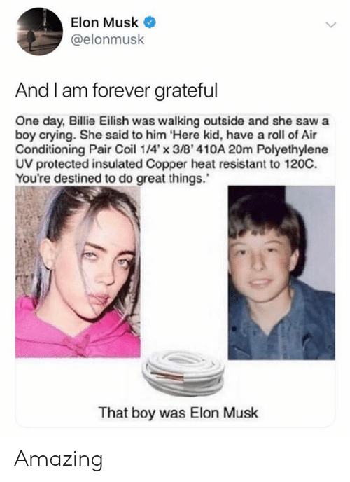 Crying, Saw, and Forever: Elon Musk  @elonmusk  And I am forever grateful  One day, Billie Eilish was walking outside and she saw a  boy crying. She said to him Here kid, have a roll of Air  Conditioning Pair Coi 14'x 3/B' 410A 20m Polyethylene  UV protected insulated Copper heat resistant to 120C.  You're destined to do great things.  That boy was Elon Musk Amazing