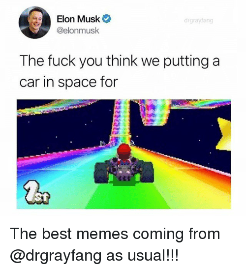 Fuck You, Memes, and Best: Elon Musk  @elonmusk  drgrayfang  The fuck you think we putting a  car in space for The best memes coming from @drgrayfang as usual!!!