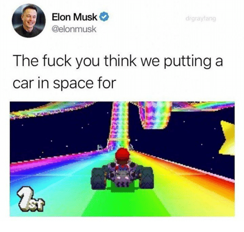Dank, Fuck You, and Fuck: Elon Musk  @elonmusk  drgrayfang  The fuck you think we putting a  car in space for