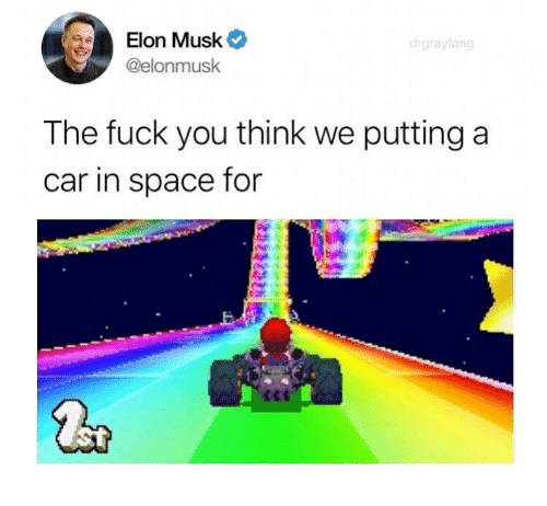 Fuck You, Fuck, and Space: Elon Musk  @elonmusk  drgrayfang  The fuck you think we putting a  car in space for