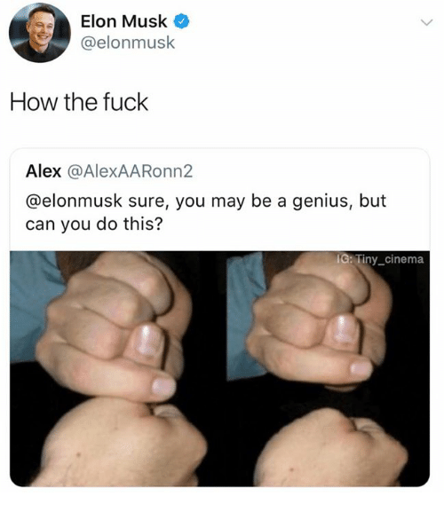 Dank, Fuck, and Genius: Elon Musk  @elonmusk  How the fuck  Alex @AlexAARonn2  @elonmusk sure, you may be a genius, but  can you do this?  C: Tiny_cinema