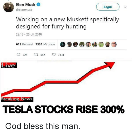 God, Memes, and News: , Elon Musk  @elonmusk  Segui  Working on a new Muskett specifically  designed for furry hunting  22:15 25 ott 2018  612 Retweet 7331 Mi piace  ·罗圈み  睡。  225 612 733 1  Live  Breaking News  TESLA STOCKS RISE 300% God bless this man.
