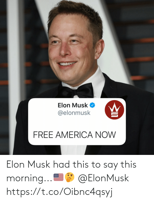 Elon Musk, Elon, and Musk: Elon Musk had this to say this morning...🇺🇸🤔 @ElonMusk https://t.co/Oibnc4qsyj