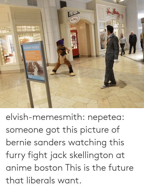 Anime, Bernie Sanders, and Future: elvish-memesmith: nepetea: someone got this picture of bernie sanders watching this furry fight jack skellington at anime boston This is the future that liberals want.