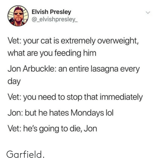 Lol, Mondays, and Lasagna: Elvish Presley  @_elvishpresley_  Vet: your cat is extremely overweight,  what are you feeding him  Jon Arbuckle: an entire lasagna every  day  Vet: you need to stop that immediately  Jon: but he hates Mondays lol  Vet: he's going to die, Jon Garfield.