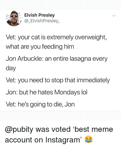 Instagram, Lol, and Meme: Elvish Presley  y@_ElvishPresley  Vet: your cat is extremely overweight,  what are you feeding him  Jon Arbuckle: an entire lasagna every  day  vet: you need to stop that immediately  Jon: but he hates Mondays lol  Vet: he's going to die, Jon @pubity was voted 'best meme account on Instagram' 😂