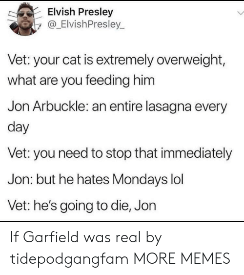 Dank, Lol, and Memes: Elvish Presley  y@_ElvishPresley.  Vet: your cat is extremely overweight,  what are you feeding him  Jon Arbuckle: an entire lasagna every  day  Vet: you need to stop that immediately  Jon: but he hates Mondays lol  Vet: he's going to die, Jon If Garfield was real by tidepodgangfam MORE MEMES