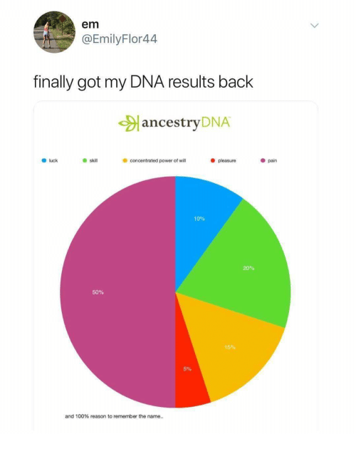 Em Finally Got My DNA Results Back ancestryDNA Luck Skill