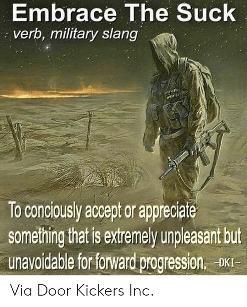 Memes, Appreciate, and Military: Embrace The Suck  verb, military slang  ME  To conciously accept or appreciate  something that is extremely unpleasant but  unavoidable for forward progression. DXI Via Door Kickers Inc.