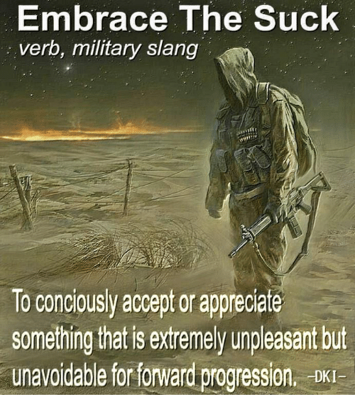 Military, Accept, and For: Embrace The Suck  verb, military slang  To concousy accept or apprecate  something that is extremely unpleasant but  unavoidable for forward progression. DKI