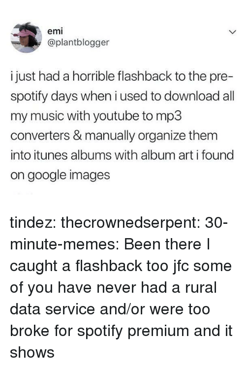 Google, Memes, and Music: emi  @plantblogger  i just had a horrible flashback to the pre-  spotify days when i used to download all  my music with youtube to mp3  converters & manually organize them  into itunes albums with album art i found  on google images tindez:  thecrownedserpent:  30-minute-memes: Been there  I caught a flashback too jfc  some of you have never had a rural data service and/or were too broke for spotify premium and it shows