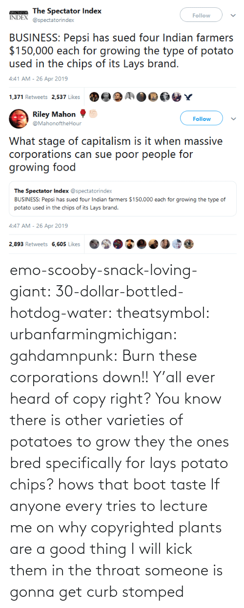 Emo, Lay's, and Target: emo-scooby-snack-loving-giant:  30-dollar-bottled-hotdog-water:  theatsymbol:  urbanfarmingmichigan: gahdamnpunk:  Burn these corporations down!!   Y'all ever heard of copy right? You know there is other varieties of potatoes to grow they the ones bred specifically for lays potato chips?  hows that boot taste   If anyone every tries to lecture me on why copyrighted plants are a good thing I will kick them in the throat    someone is gonna get curb stomped