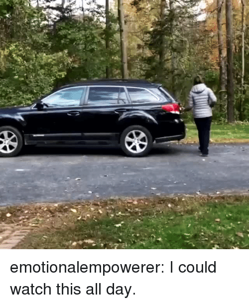 Emotionalempowerer I Could Watch This All Day | Target Meme