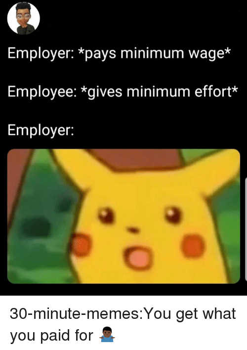 Memes, Target, and Tumblr: Employer: *pays minimum wage*  Employee: *gives minimum effort*  Employer: 30-minute-memes:You get what you paid for 🤷🏿♂️