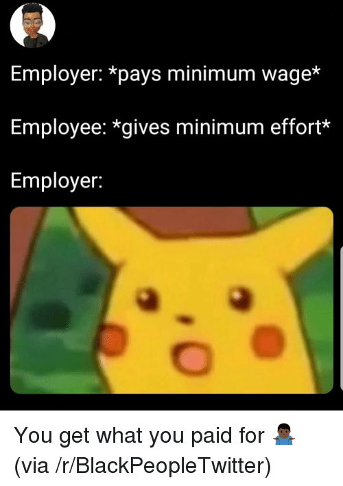 Blackpeopletwitter, Minimum Wage, and Via: Employer: *pays minimum wage*  Employee: *gives minimum effort*  Employer: You get what you paid for 🤷🏿♂️ (via /r/BlackPeopleTwitter)