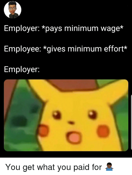 Minimum Wage, You, and What: Employer: *pays minimum wage*  Employee: *gives minimum effort*  Employer: You get what you paid for 🤷🏿♂️