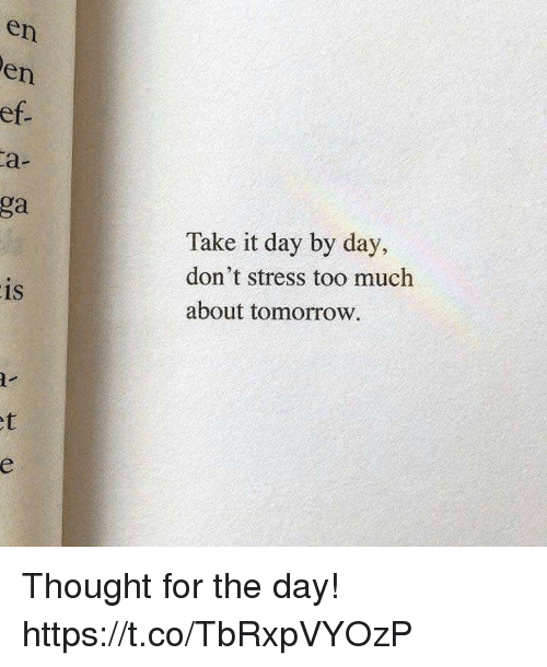 Memes, Too Much, and Tomorrow: en  en  ef  a-  ga  Take it day by day,  don't stress too much  about tomorrow  is  1S Thought for the day! https://t.co/TbRxpVYOzP