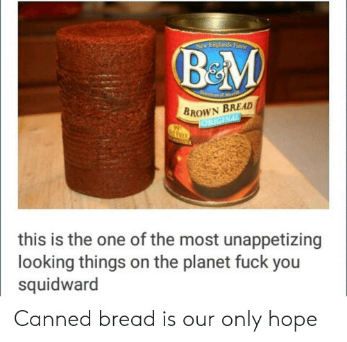 Fuck You, Squidward, and Fuck: Endands Fines  BROWN BREAD  REI  this is the one of the most unappetizing  looking things on the planet fuck you  squidward Canned bread is our only hope