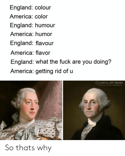 America, England, and Memes: England: colour  America: color  England: humour  America: humor  England: flavour  America: flavor  England: what the fuck are you doing?  America: getting rid of u  CLASSICALART MEMES  face  memes So thats why
